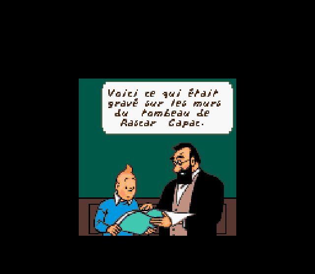 Notre test de Tintin: Le Temple du Soleil sur Gameboy Color