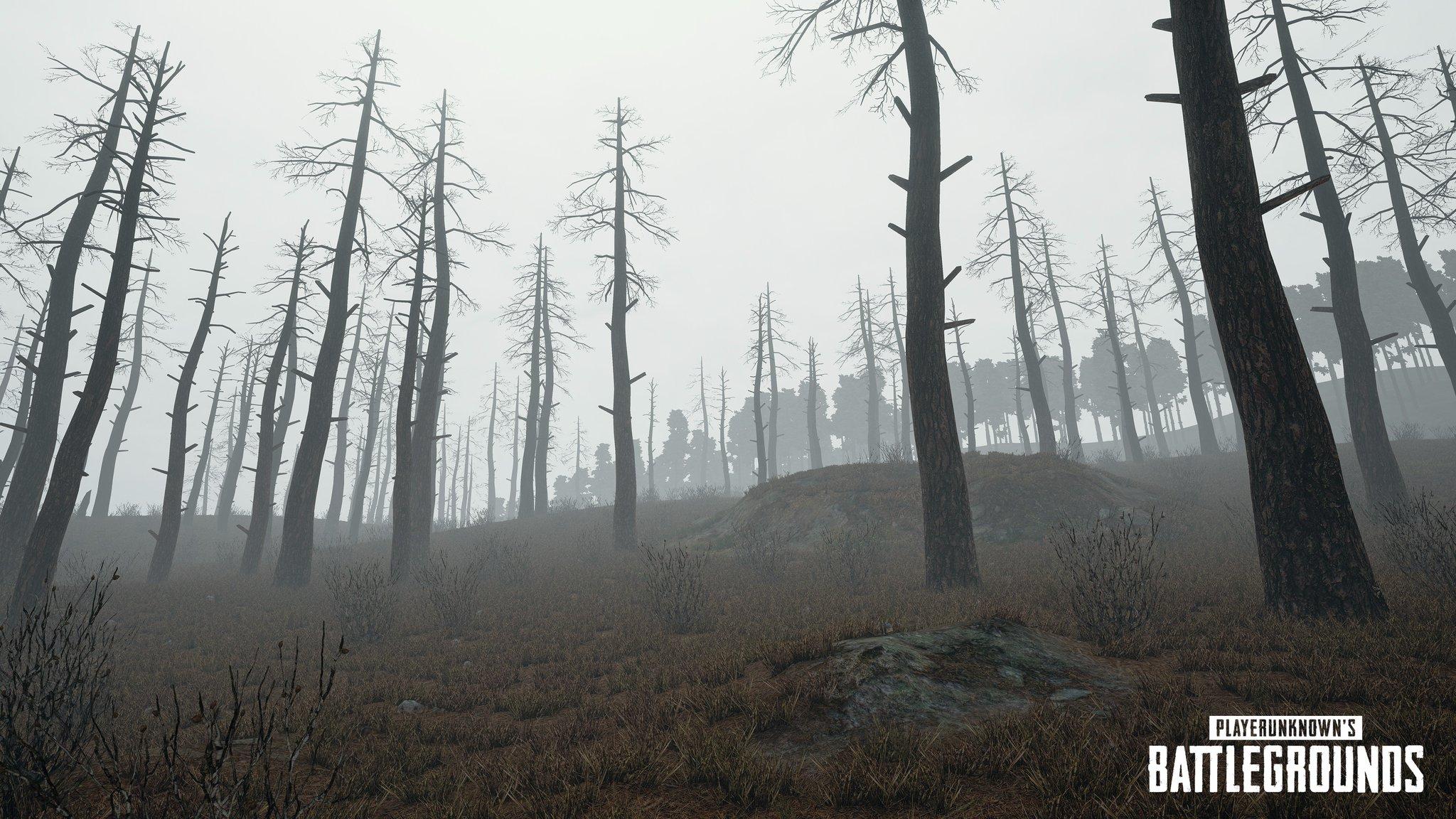 Brouillard Fog Brume PUBG PC